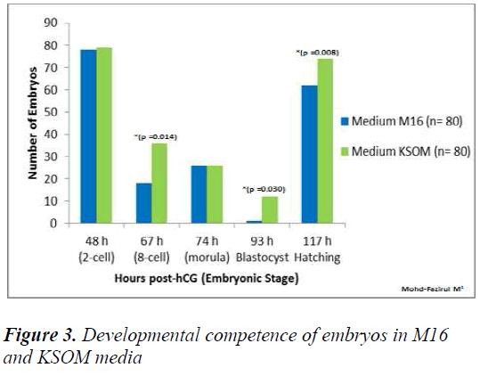 biomedres-embryos-M16-KSOM