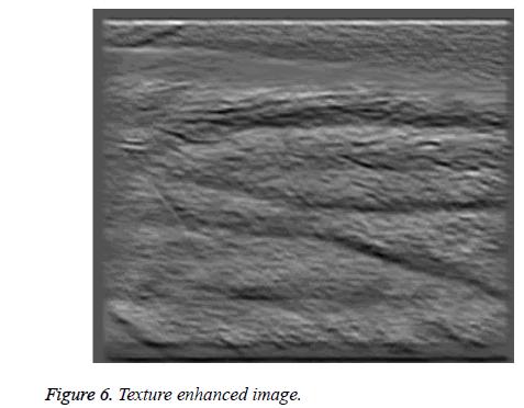 biomedres-enhanced-image