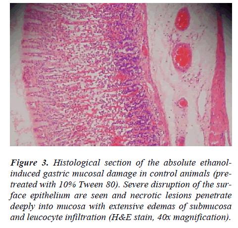 biomedres-ethanolinduced-gastric-mucosal-damage