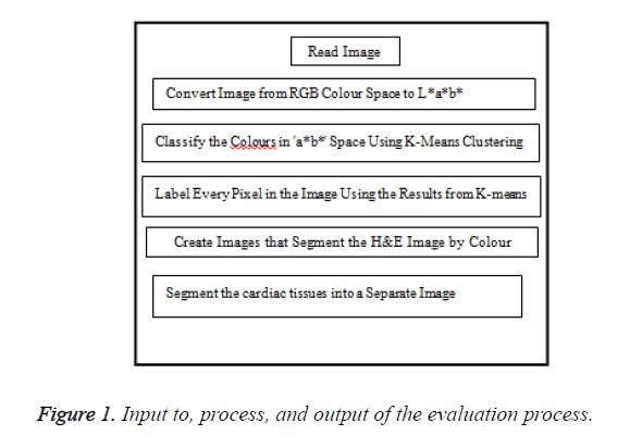 biomedres-evaluation-process