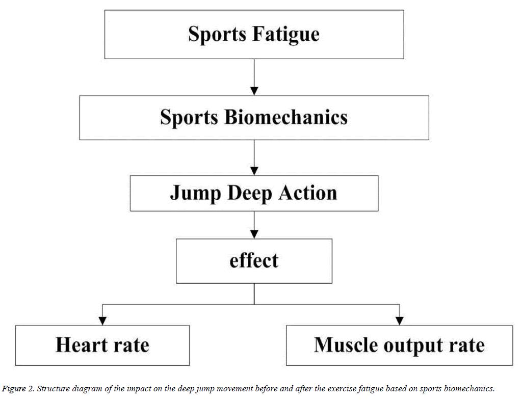biomedres-exercise-fatigue