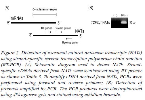 biomedres-exosomal-natural
