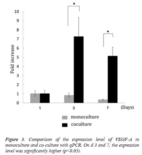 biomedres-expression-culture