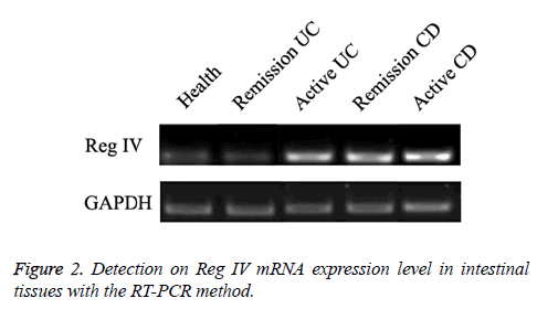biomedres-expression-level