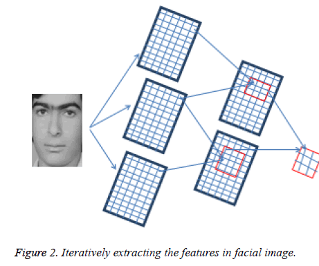 biomedres-facial-image