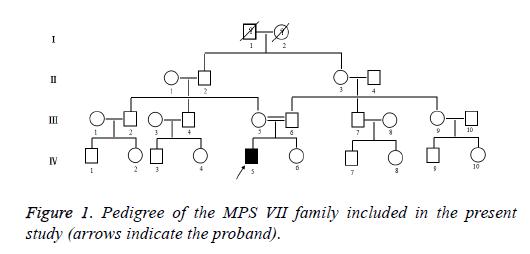 biomedres-family-acetate