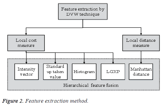biomedres-feature-extraction-method