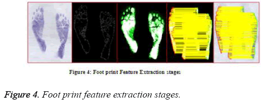 biomedres-feature-extraction-stages