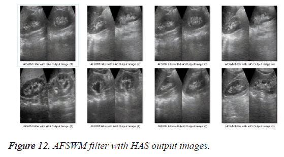 biomedres-filter-output-images