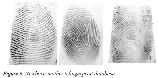 biomedres-fingerprint-database