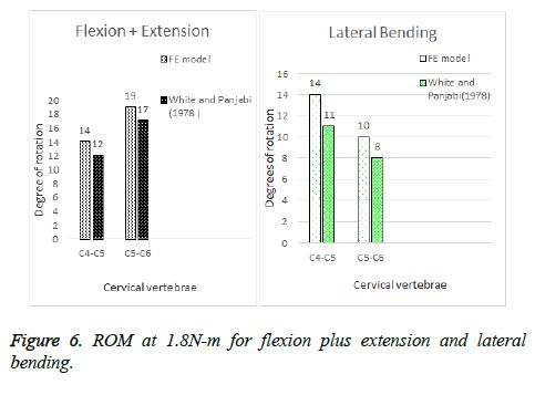 biomedres-flexion-plus-extension