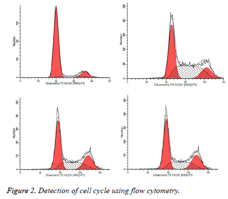 biomedres-flow-cytometry