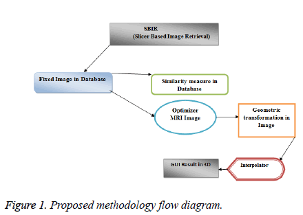 biomedres-flow-diagram