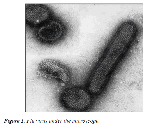 biomedres-flu-virus-microscope