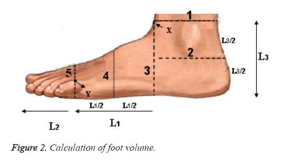 biomedres-foot-volume
