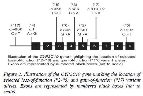 biomedres-gene-marking