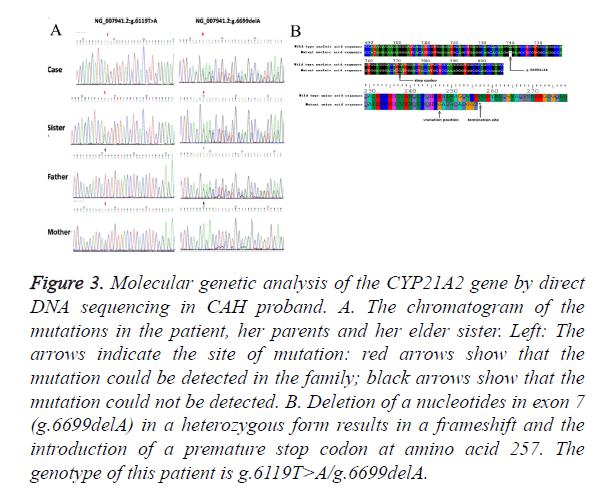 biomedres-genetic-analysis