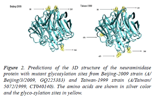 biomedres-glycosylation-amino-acids
