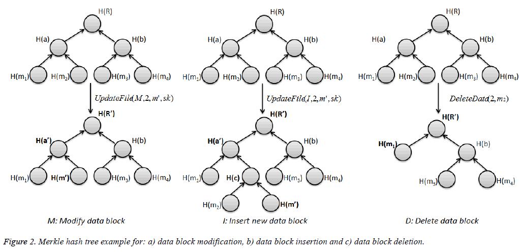 biomedres-hash-tree