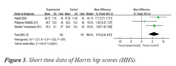 biomedres-hip-scores