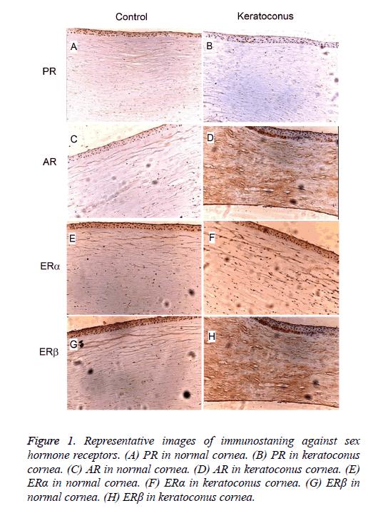 biomedres-hormone-receptors