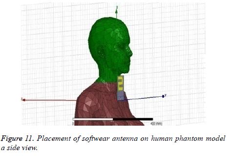 biomedres-human-phantom