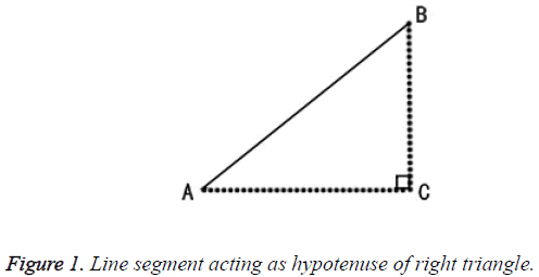 biomedres-hypotenuse-right-triangle