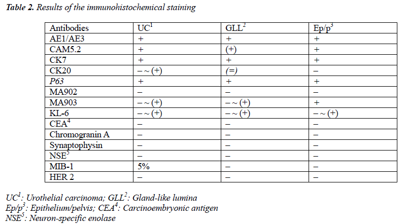 biomedres-immunohistochemical-staining