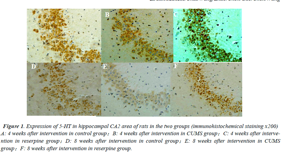 biomedres-immunohistochemical-staining
