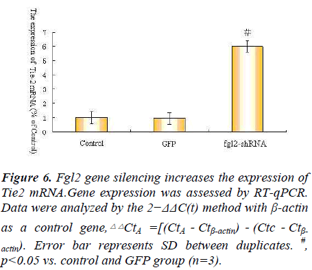 biomedres-increases-expression