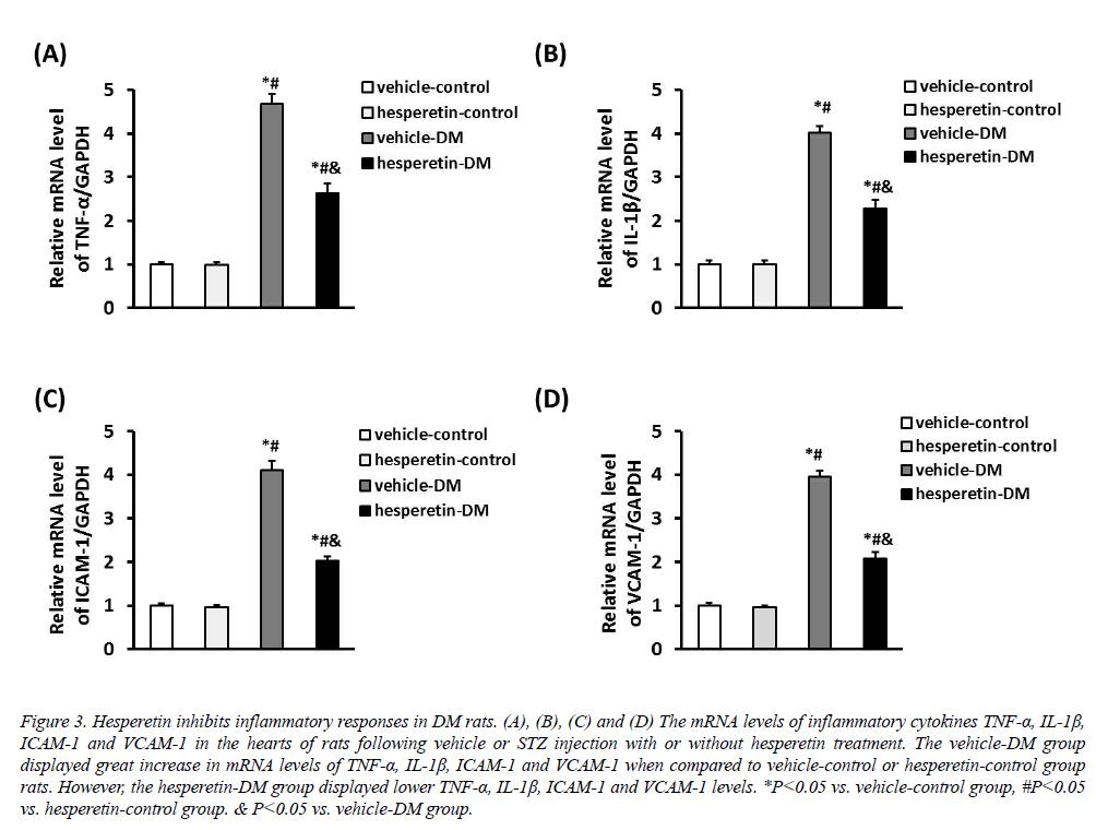 biomedres-inflammatory-responses