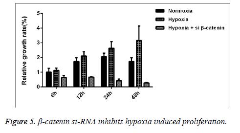 biomedres-inhibits-hypoxia