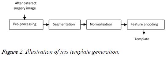 biomedres-iris-template-generation