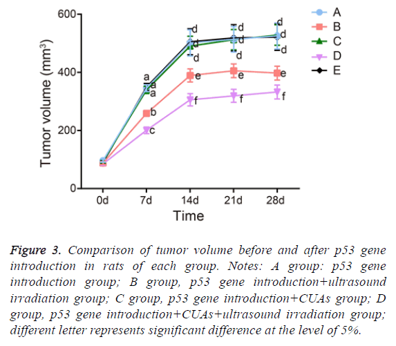 biomedres-irradiation-group