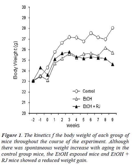 biomedres-kinetics-body-weight