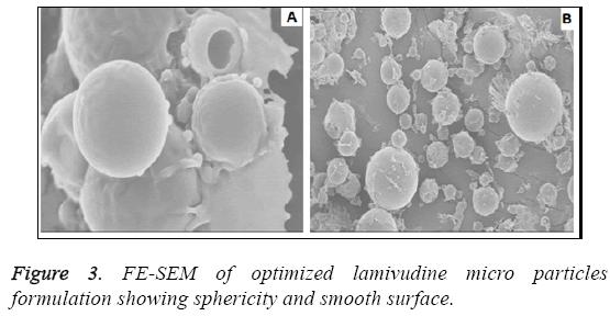 biomedres-lamivudine-micro-particles