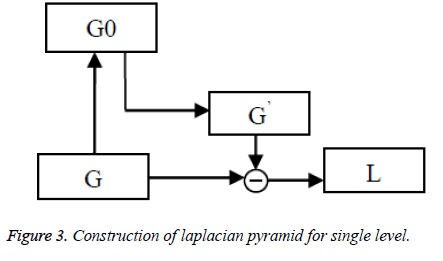 biomedres-laplacian-pyramid