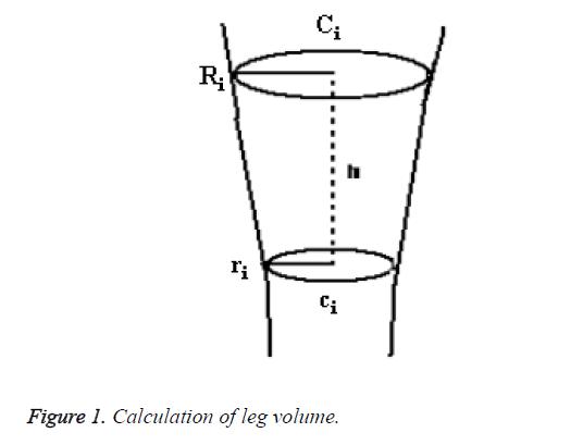 biomedres-leg-volume