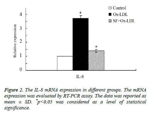 biomedres-level-statistical