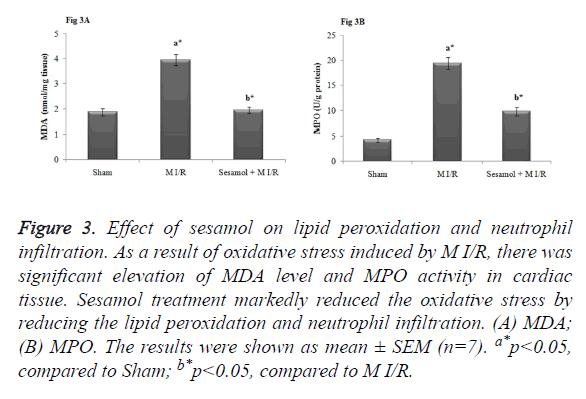 biomedres-lipid-peroxidation