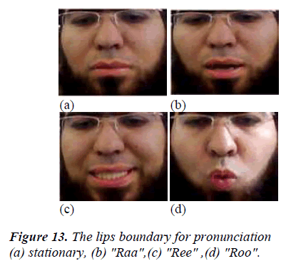 biomedres-lips-boundary