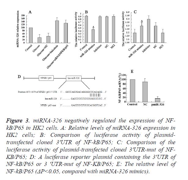 biomedres-luciferase-activity