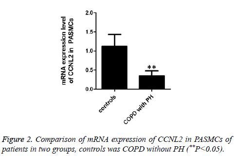 biomedres-mRNA-expression