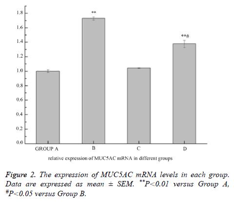 biomedres-mRNA-levels