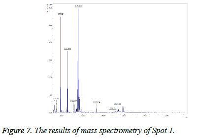 biomedres-mass-spectrometry