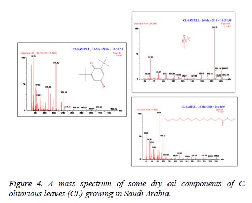 biomedres-mass-spectrum