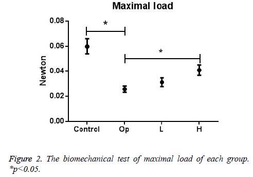 biomedres-maximal-loadl