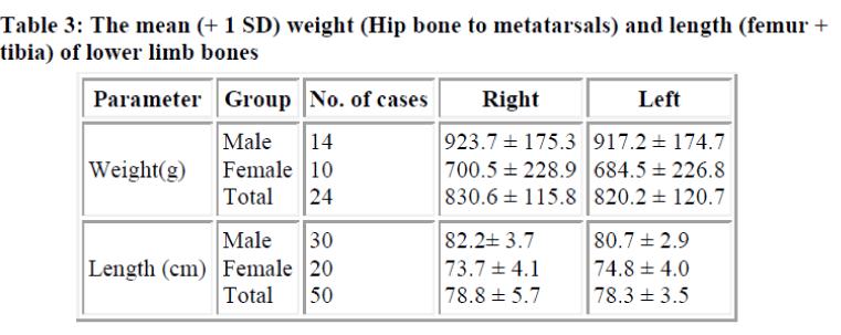 biomedres-mean-weight-Hip-bone-metatarsals-length
