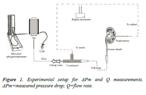 biomedres-measured-pressure