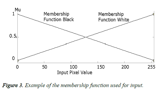 biomedres-membership-function